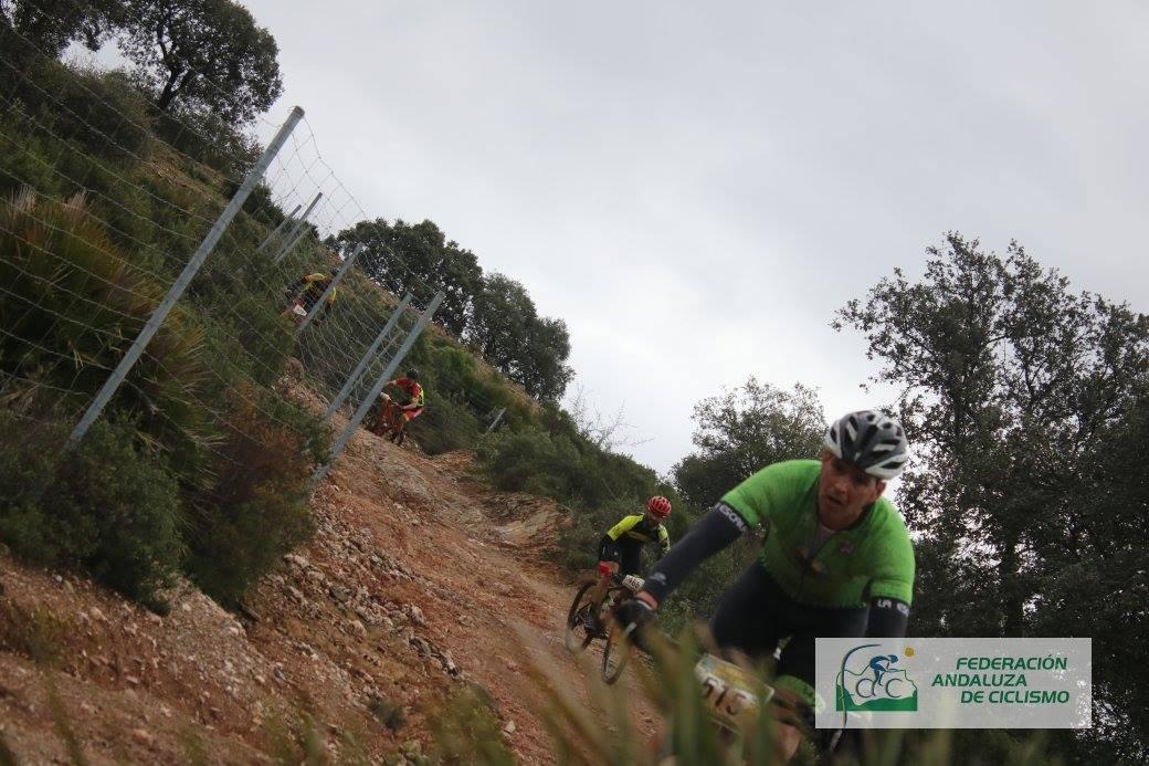 XII DESAFIO BTT SIERRA DE AZNALCOLLAR