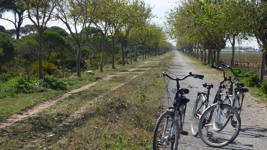 Chipiona-un-enclave-ideal-para-el-ciclismo