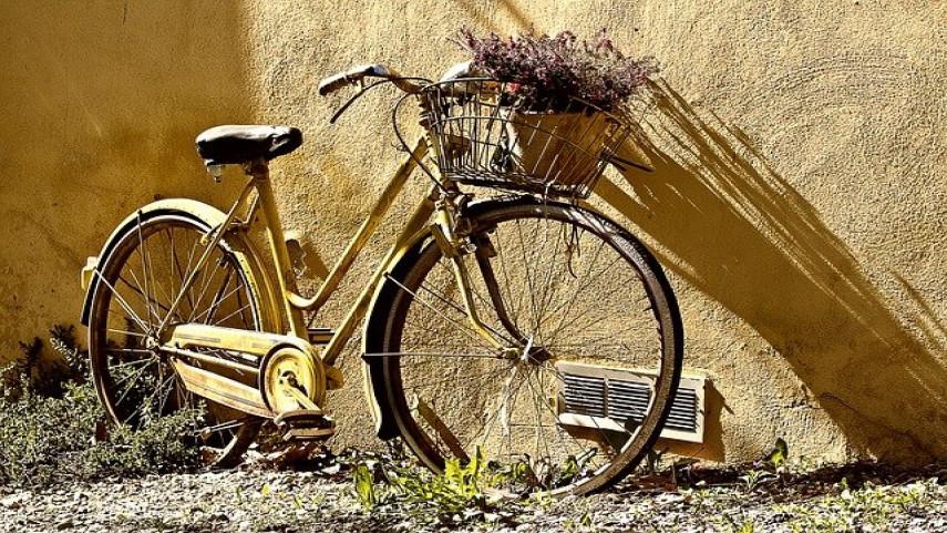 El-tandem-formado-por-Venge---Martin-convocado-por-la-Seleccion-Espanola-de-Ciclismo-Adaptado-de-Carretera-para-su-proxima-concentracion