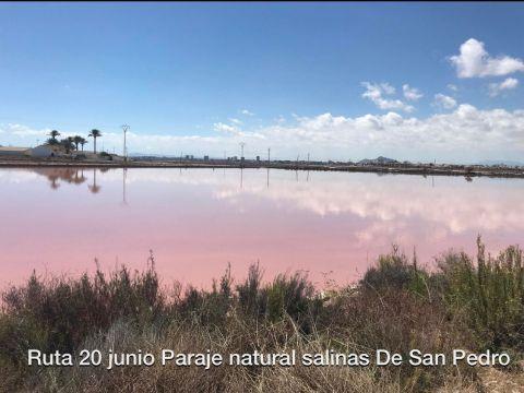 SALINAS Y ARENALES DE SAN PEDRO