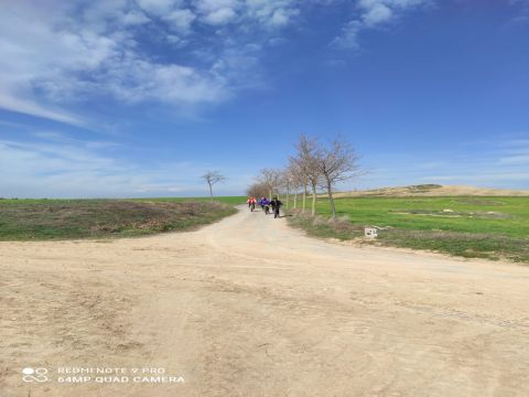 Sendas y caminos