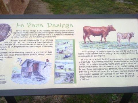 Los Machucos (Monumento a la Vaca Pasiega)