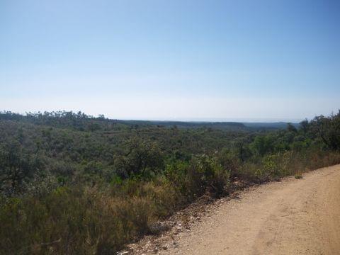 Paterna del Campo - Berrocal (Paisaje Protegido del Río Tinto)