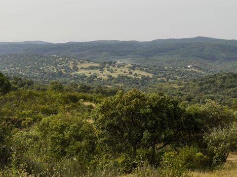 Aroche-El Mustio (Eco de la Naturaleza)