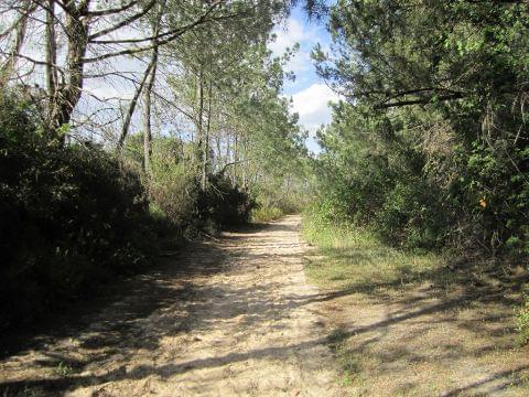 Ayamonte - Cartaya (La Vía Verde Litoral)