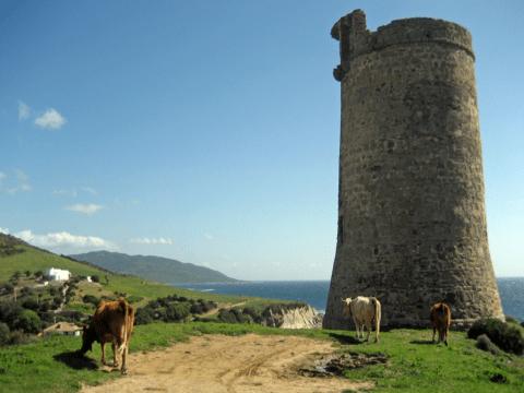 Torre del Guadalmesí