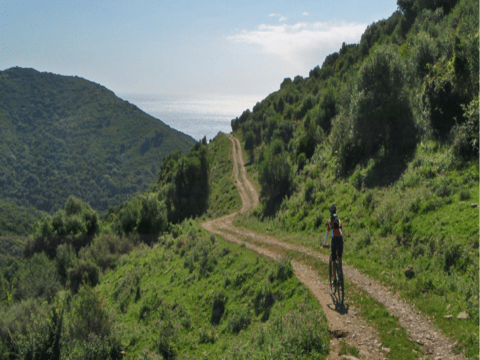 Ruta Cala Arenas