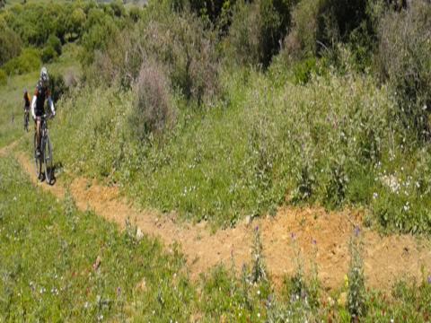 Ruta Rejanosa-Monte de la Torre