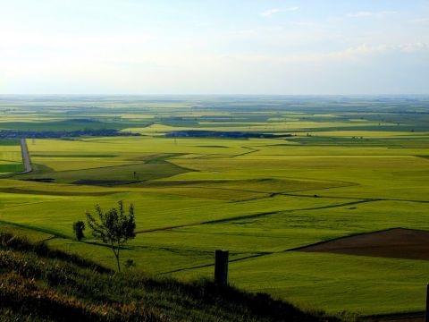 Palencia- Becerril de C-Ampudia- Dueñas - Palencia