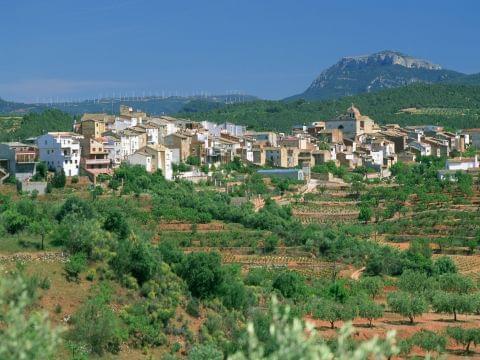 Priorat (Falset - El Masroig - Els Guiamets - Marçà - Falset)