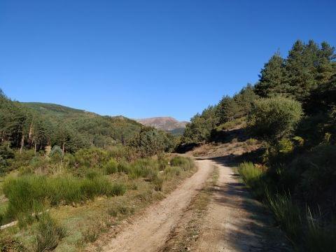 Barbadillo de Herreros - Morales (refugio) (29/09/19)