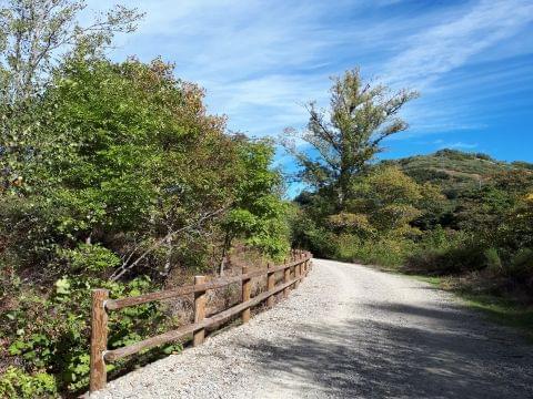 Camino natural Villablino - Villaseca de Laciana