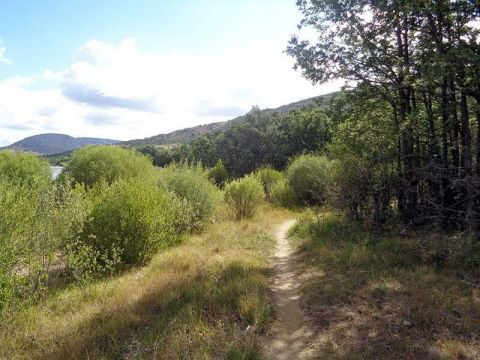 Embalse Pinilla – Bosque Finlandés